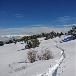 A pristine landscape | Snowshoeing holidays in the Pyrenees