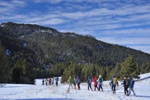La Molina | Snowshoeing holidays
