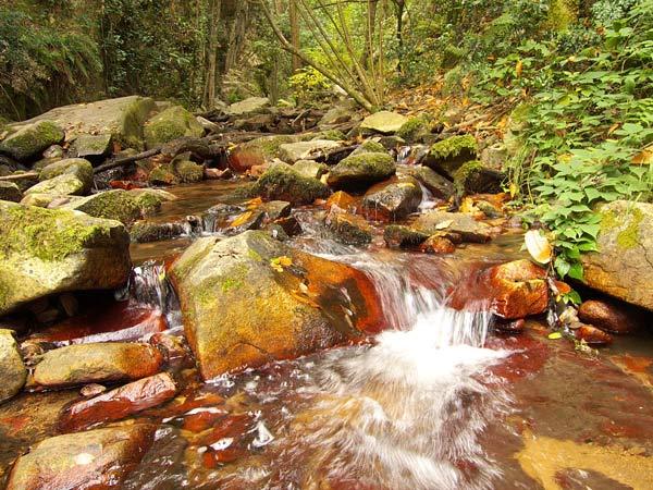 Montseny | Walking holidays in Spain